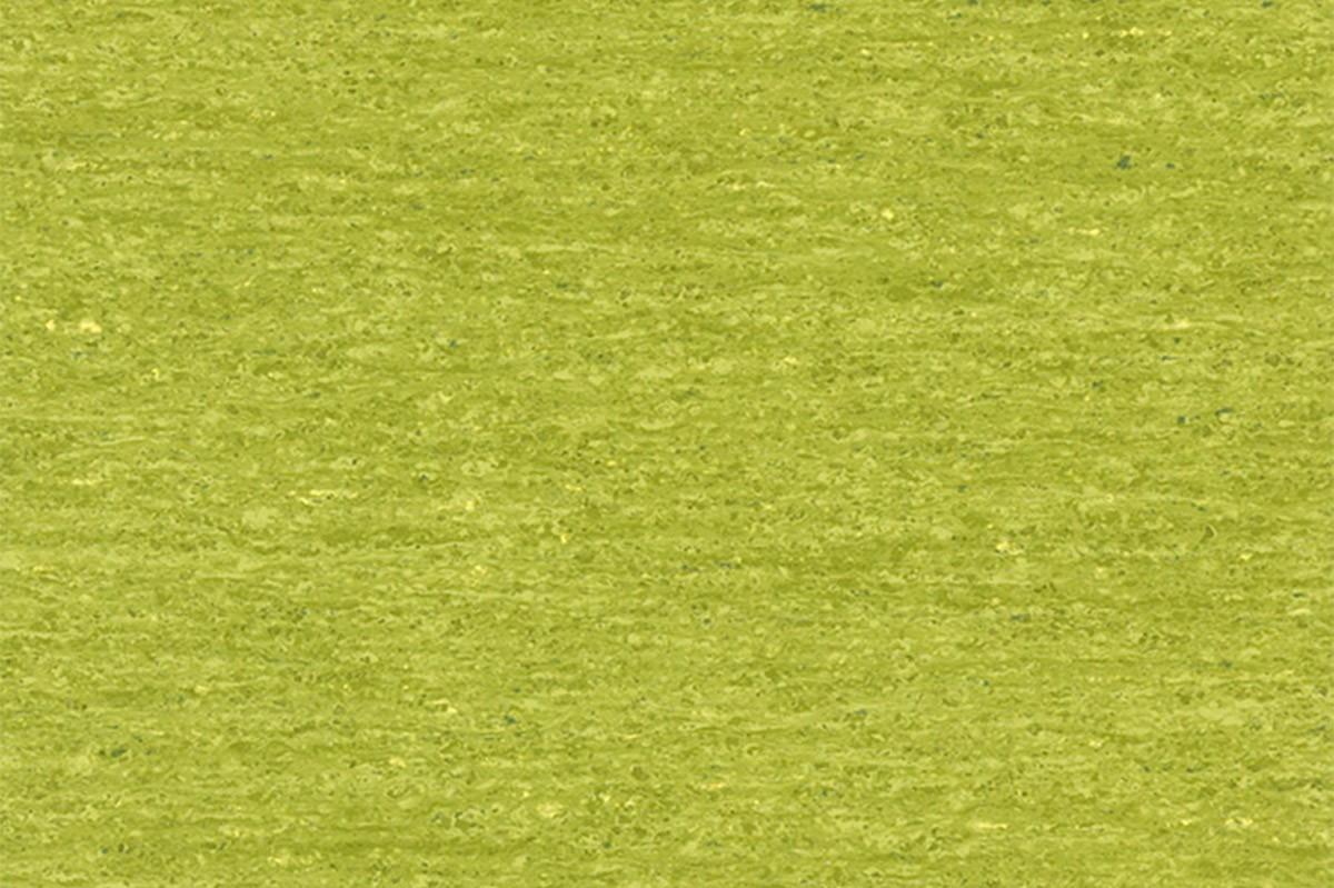 linoleum omogen verde